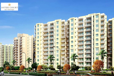 Orris Aster Court Gurgaon